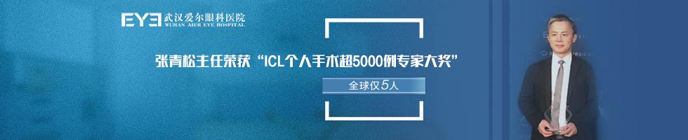 张青松icl获奖